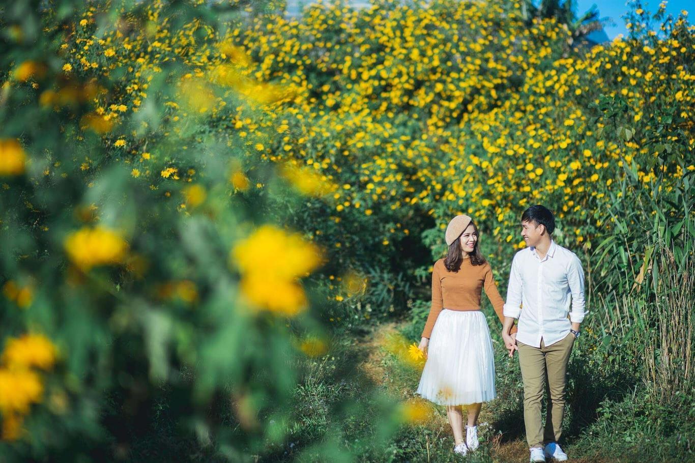 Chụp ảnh cưới ở Ba Vì mùa hoa dã quỳ