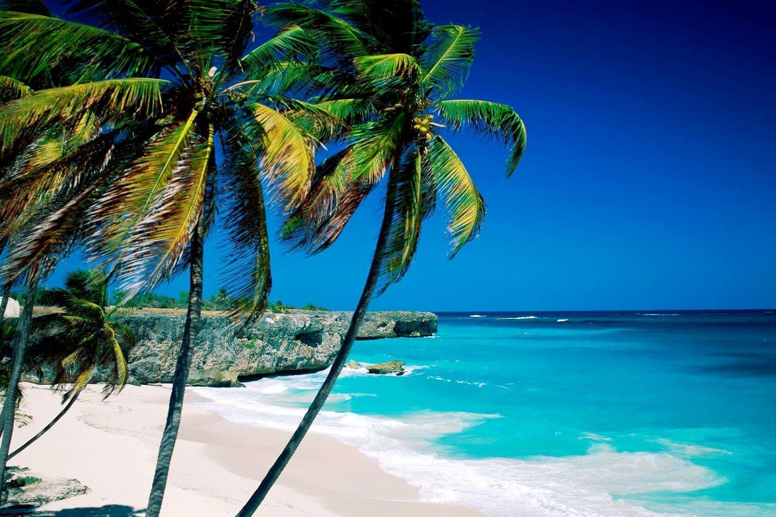 Kinh nghiệm tắm biển Nha Trang - ở đâu & có gì đẹp nhỉ? — 2020